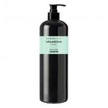Шампунь для восстановления волос с чёрным тмином аюрведа, 480 мл