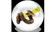 С змеиным ядом